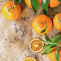 Tangerines With Leaves by Natasha Breen