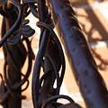 Tangled Vines by Linda Shafer