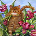 Tango In The Tulips by Mindy Lighthipe