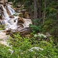 Tanner Flat Falls by Gina Herbert