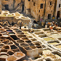 Tanneries Of Fes Morroco by David Smith