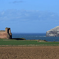 Tantallon Castle And The Bass Rock by Maria Gaellman