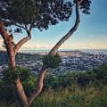 Tantalus Views by Jason Keinigs