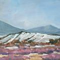 Taos Red Willows by Robert James Hacunda