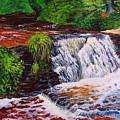 Taqua Falls by Marian Vernier