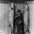 Tarpon Fishing 19th Century  by Science Source