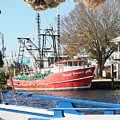 Tarpon Springs Shrimp Boat by Carol Groenen