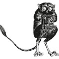 Tarsier With Vintage Camera by Eclectic at HeART