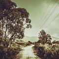 Tasmania Country Roads by Jorgo Photography - Wall Art Gallery