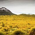 Tasmania Mountains Of The East-west Great Divide  by Jorgo Photography - Wall Art Gallery