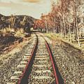 Tasmanian Country Tracks by Jorgo Photography - Wall Art Gallery