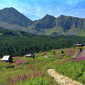 Tatry Mountains - Pol 981118 by Dean Wittle