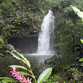 Taveuni, Tavoro Waterfall by Himani - Printscapes