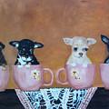 Tea Cup Chihuahuas by Aleta Parks