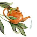 Tea Frog by Amy Kirkpatrick