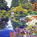Tea House Lake by David Lloyd Glover