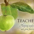 Teachers by Lori Deiter