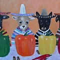 Teacup Chihuahuas In Mexico by Aleta Parks