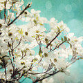 Teal Dogwood No. 1 by Lisa Russo