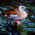 Teal Duck Of Naples by Laurie Paci