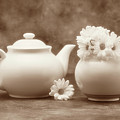 Teapot with Daisies II by Tom Mc Nemar