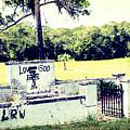 Tearful Vandalism by Shannon Sears