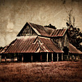 Teaselville Texas Barns by Julie Hamilton