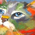 Technicolor Tabby by Susan A Becker
