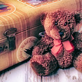 Teddy Bear And Suitcase by Garry Gay