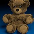 Teddy Bear by Paul Maher