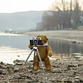 Teddy Bear Taking Pictures With An Old Camera By The Riverside by Andrea Varga