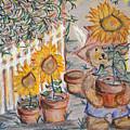 Teddy's Sunshine by Elisabeth Achauer