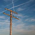 Telegraph Line by Grant Groberg