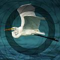 Telescopic Stork Flight by Isabella Howard