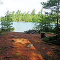 Temagami Island Campsite I by Debbie Oppermann
