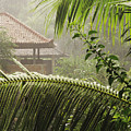 Temple At Tchampuan by William Waterfall - Printscapes