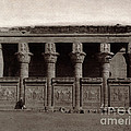 Temple Of Hathor, Early 20th Century by Science Source