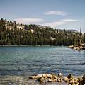 Tenaya Lake #5 by Robert J Caputo
