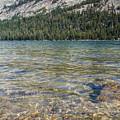 Tenaya Lake #6 by Robert J Caputo