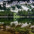Tenaya Lake by Gary Migues