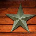 Tenkiller Lone Star by Susan Vineyard