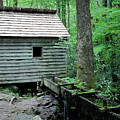Tennessee Grist Mill by Nicholas Blackwell