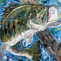 Tennessee River Largemouth Bass by Jessica Burgess