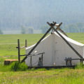 Tent Living Montana 2010 by Diane Greco-Lesser