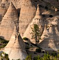 Tent Rocks Wilderness by David Lee Thompson