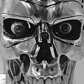 Terminator by Charla Dury