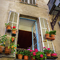 Terra Cotta Pots Outside Window In Old Town Nice, France by Liesl Walsh