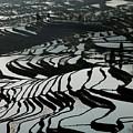 Terrace Notes by Xichang Sun