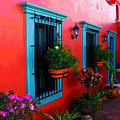 Terrace Windows At Casa De Leyendas By Darian Day by Mexicolors Art Photography