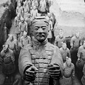 Terracotta Warrior Army Of Qin Shi Huang Di IIi by Richard Reeve